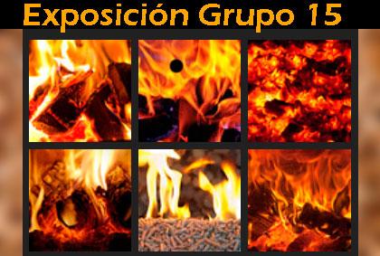 Exposición Estufas, Calderas y Chimeneas Grupo 15 2019-20